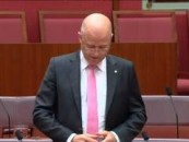 Leyonhjelm on national security legislation