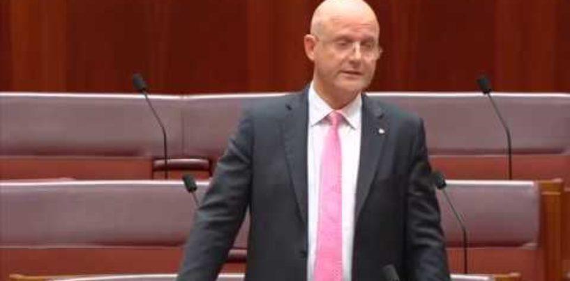 Senator Leyonhjelm opposes the counter terrorism legislation amendment bill