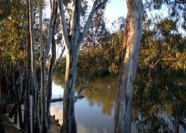 Burke 'tone deaf' to Murray Darling communities: Leyonhjelm