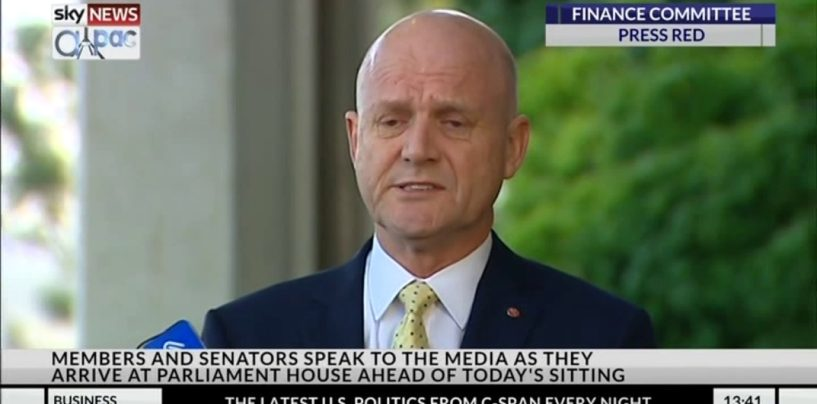 David Leyonhjelm channels power of Kek to attack Section 18C
