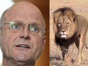 Banning lion trophies is not conservation