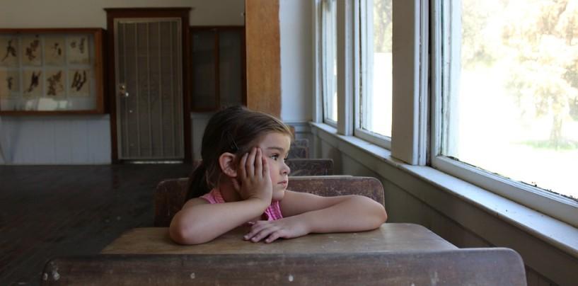 Leyonhjelm finds huge savings in school funding