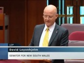 Senator Leyonhjelm on government debt, and continued borrowing.