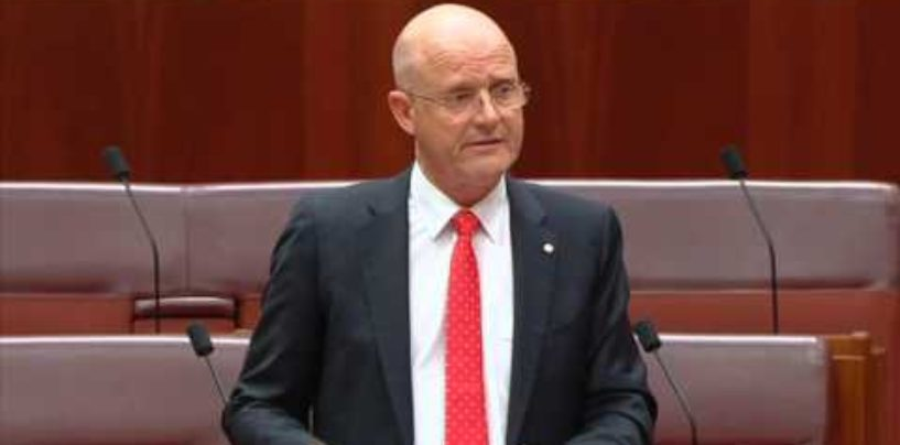 Senator Leyonhjelm moves a disallowance motion to repeal the Adler import ban