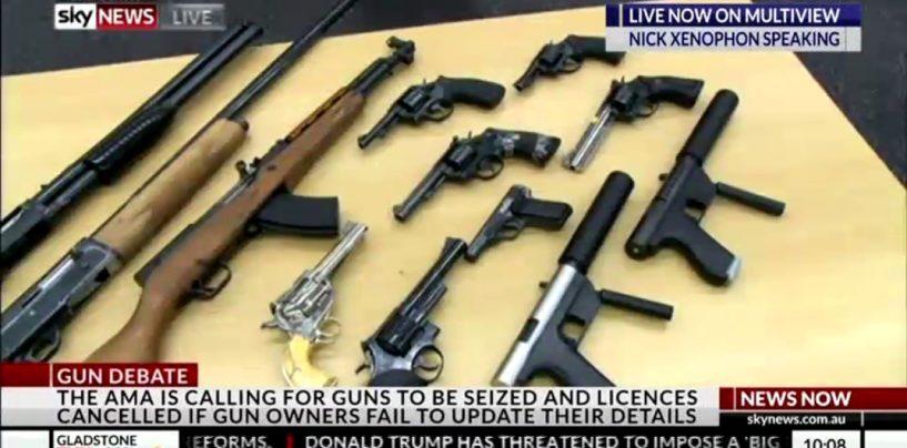Leyonhjelm on the AMA and gun control