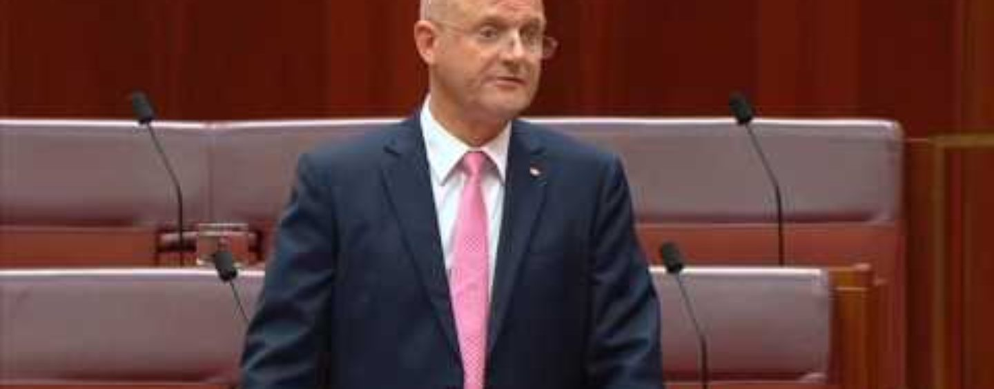 Leyonhjelm on wind farms: How much is this costing the economy?